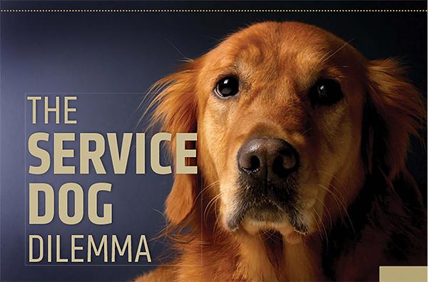 The Service Dog Dilemma
