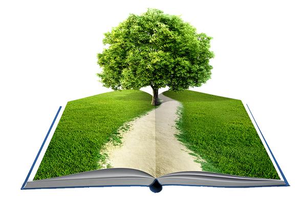 Healing through the Humanities